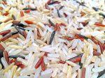 White Brown Red Wild rice